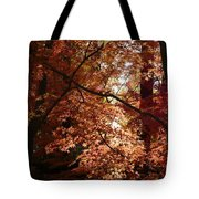 Autumn Sunshine Poster Tote Bag