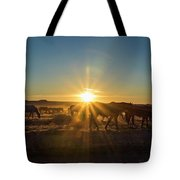 Autumn Sunset Tote Bag by Nicole Markmann Nelson
