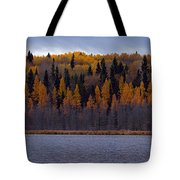 Autumn Tiers Tote Bag