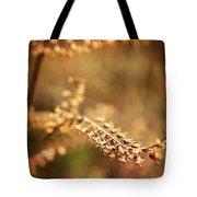 Autumn Tones Tote Bag