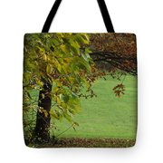 Autumn Tree 1 Tote Bag