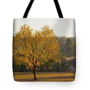 Autumn Tree At Sunset Tote Bag