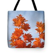 Autumn Tree Leaves Art Prints Blue Sky White Clouds Tote Bag