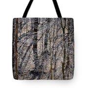 Autumn Trees 1 Tote Bag