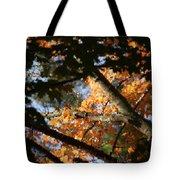 Autumn Trees 2015 Pa 01 Tote Bag