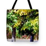 Autumn Trees 7 Tote Bag