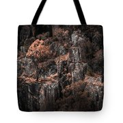 Autumn Trees Growing On Mountain Rocks Tote Bag