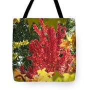 Autumn Trees Landscape Art Prints Canvas Fall Leaves Baslee Troutman Tote Bag