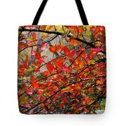 Autumn Trees Rock City Tote Bag