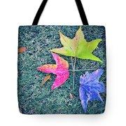 Autumn Trio Tote Bag
