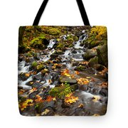 Autumn Tumbles Down Tote Bag