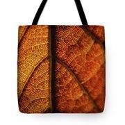 Autumn Veins Tote Bag