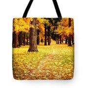 Autumn Walk In Spokane Tote Bag