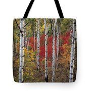 Autumn Warm Tote Bag