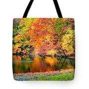 Autumn Warmth Tote Bag