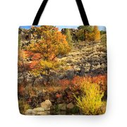 Autumn Waters Of The Susan River Tote Bag