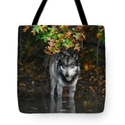 Autumn Wolf Tote Bag