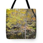 Autumn Woods 2 Tote Bag