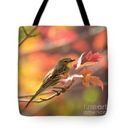 Autumn Yellow Rumped Warbler Tote Bag