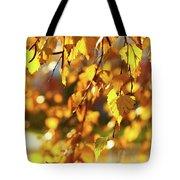 Autumnal Curtain Tote Bag