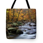 Autumnal Face Tote Bag