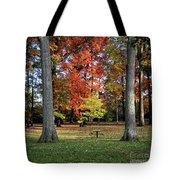 Autumnal Framework Tote Bag
