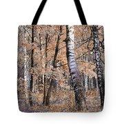 Autumnal Lightness Tote Bag
