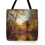 Autumnal Tones 2 Tote Bag