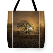 Autumnal Triptych. Tote Bag