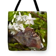 Autumnleaf Butterfly Tote Bag