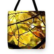 Autumn's Revelry Tote Bag