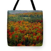 Autumns Colors Tote Bag