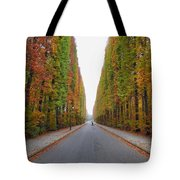 Autumn's Colours Tote Bag