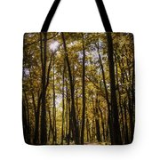 Autumns Fire Tote Bag