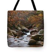 Autumns Flow Tote Bag