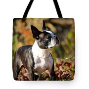 Autumn's Glamour Tote Bag