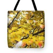 Autumns Gold Tote Bag