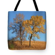 Autumn's Gold - No 1 Tote Bag