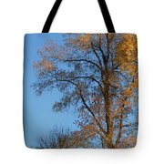 Autumn's Gold  - No 2 Tote Bag