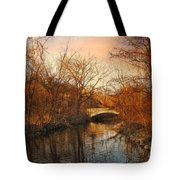 Autumn's Golden Glow Tote Bag