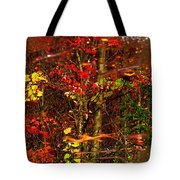 Autumns Looking Glass 2 Tote Bag