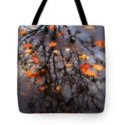 Autumns Looking Glass 3 Tote Bag