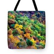 Autumn's Palette Tote Bag