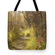 Autumns Path Tote Bag