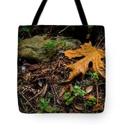 Autumn's Treasure Tote Bag