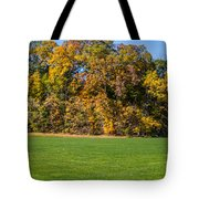 Autumn's Wall Tote Bag