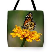 Autumn's Wings Tote Bag