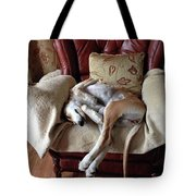 Ava - Asleep On Her Favourite Chair Tote Bag