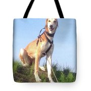 Ava-grace, Princess Of Arabia  #saluki Tote Bag
