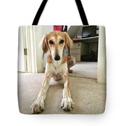 Ava On Her First Birthday #saluki Tote Bag